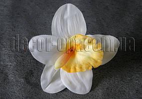 Орхидея  голова 13 см