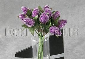 Ежевика фиолетовая проволоке 12 шт