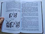 Л. Рижков Про старожитності російської мови, фото 4