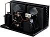 Агрегат холодильний TECUMSEH TAGS4561THR
