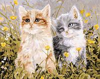 Картина по номерам Белоснежка «Славная парочка»