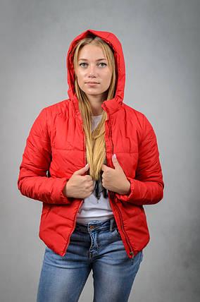 Короткая женская куртка весна-осень с капюшоном, фото 2