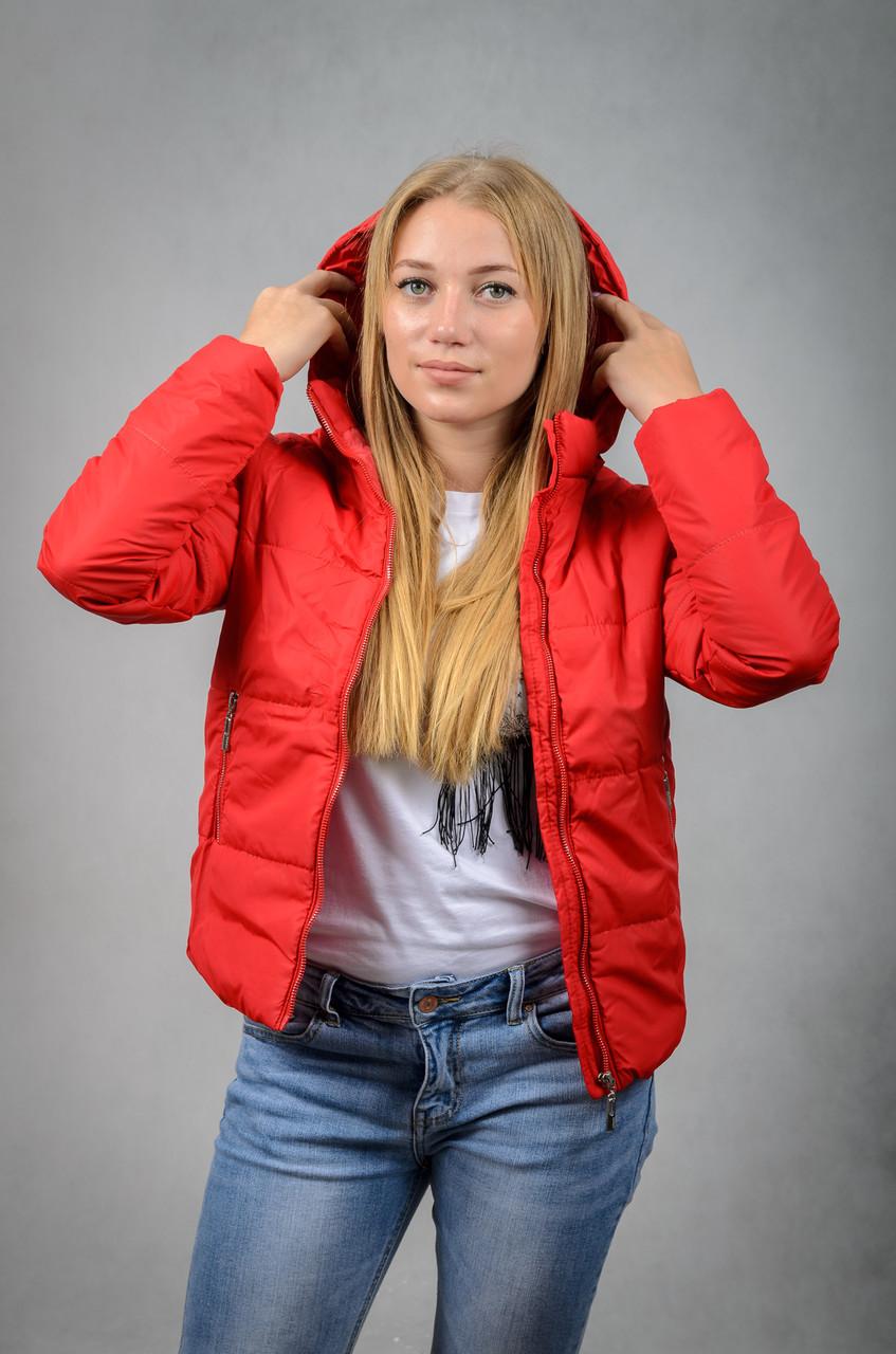 Короткая женская куртка весна-осень с капюшоном
