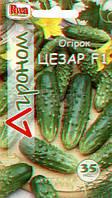 Семена Огурец пчелоопыляемый Цезарь F1,  35 семян  Riva