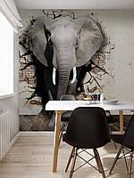 "3Д фотообои на стену ""Слон"""
