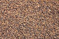 Семена Фацелия