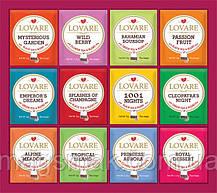 Коллекция чая Lovare Портфельчик ассорти 12 видов по 5 шт 120 г, фото 2