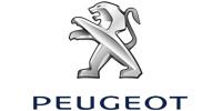 Зимние накладки Peugeot