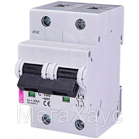 Автоматический выключатель ETIMAT 10  2р C 100А (20 kA), фото 2