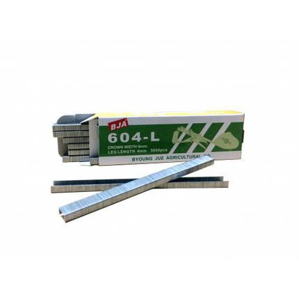 Скобы для степлера для фиксации растений 4*6мм, 5000 шт, фото 2