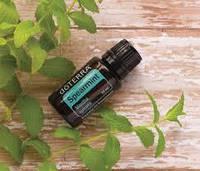 Эфирное масло Садовой мяты Spearmint essential oil
