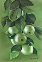 Ветка яблок бумага 34х48 см картина пастель