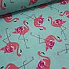 Ткань польская хлопковая, малиновые фламинго на мятном