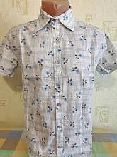 Чоловіча сорочка ZEROMEN короткий рукав