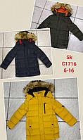 Куртки зимние на меху для мальчиков Setty Koop 6-16лет