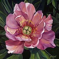 Розовый пион холст 60х60 см картина масло