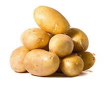 ТМ АГРОМАКСИ Картопля Ілона 0,01 г