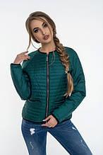 Модная куртка осень-весна Дана изумруд (42-52)