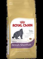 Royal Canin British Shorthair Adult 4 кг сухой корм (Роял Канин) для британских короткошерстных кошек старше 12 месяцев