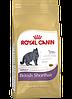 Royal Canin British Shorthair Adult 10 кг сухой корм (Роял Канин) для британских короткошерстных кошек старше 12 месяцев - Фото