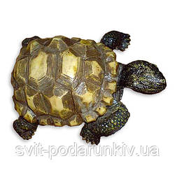 Фигурка черепахи залог мудрости, долголетия, надёжности и стабильности