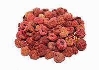 Малина обыкновенная плоды 100 грамм