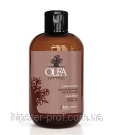 Восстанавливающий шампунь с маслами баобаба и льнаDott. Solari Olea Shampoo 250 ml