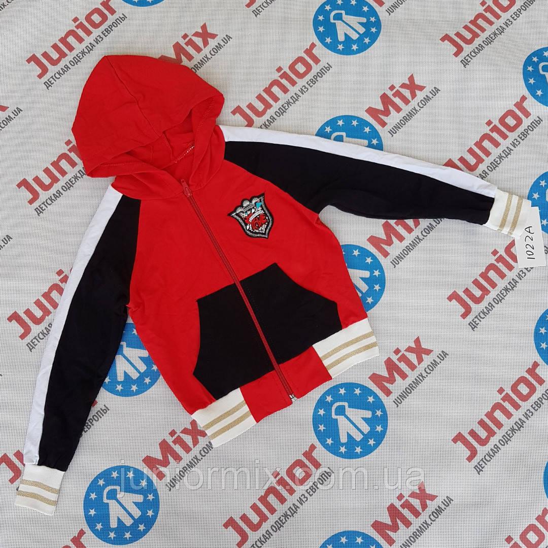 94c8d3387269 Детские цветные модные трикотажные кофты с капюшонами для девочек оптом  B.B.W kids ИТАЛИЯ