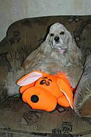Подушка-игрушка Собачка Джой, Арт. LY - 10аси03ив
