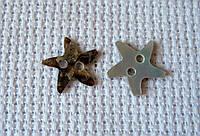 Пуговица перламутровая, декоративная, звезда, 13 мм