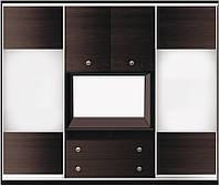 Шкаф-купе для гостинной №2 с фасадами из ДСП или зеркала + 2 двери распашные из ДСП