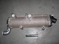 Теплообменник жидкостно-масляный ЯМЗ 7511 (замена 238Б. двигатель 238ДЕ(2),-БЕ(2) (пр-во ЯМЗ)