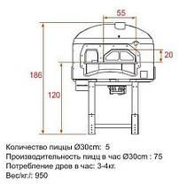 Дровяная печь для пиццы DR85K Asterm, фото 3