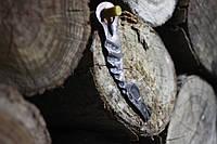 Открывашка для бутылок голова коня, фото 1