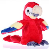 Большой попугай - повторюшка