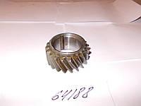 Шестерня коленчатого вала Д-240 нового образца, 240-1005030-Б