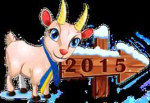 Как встретить 2015 год?