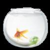 Круглые аквариумы и бокалы