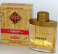 Habana Perfusion Oxford (Хабана) мужская туалетная вода 100ml