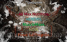 Поступление: All Max Nutrition, HEREVIN, MuscleMaxx, NOW, Powerful Progress.
