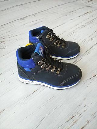 Стильные ботинки для мальчиков Clibee
