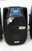 Мобильная акустическая система 1202 Bluetooth + MP3 + микрофоны, аккумулятор