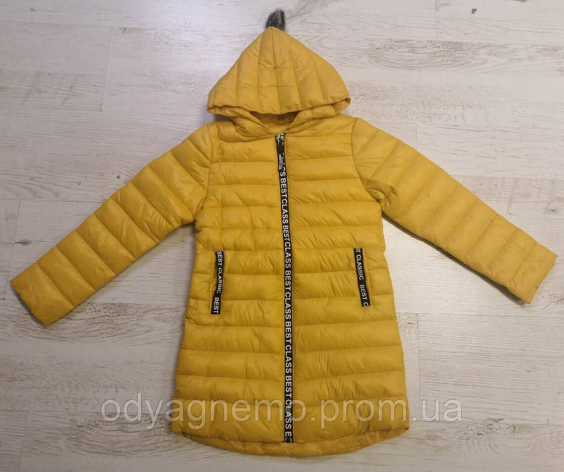 Курточка для девочек Glo-Story оптом, 110-160 рр., фото 1