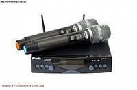 Радиосистема DV audio MGX-24 Dual сдвоенная