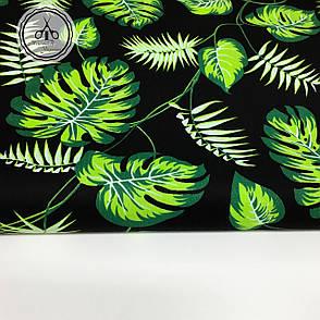 """Польская хлопковая ткань """"листья монстеры и пальмы на черном"""", фото 2"""