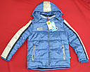 Куртка зимова Canadian блакитна (QuadriFoglio, Польща), фото 2