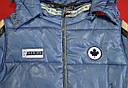 Куртка зимова Canadian блакитна (QuadriFoglio, Польща), фото 4