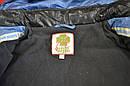 Куртка зимова Canadian блакитна (QuadriFoglio, Польща), фото 9