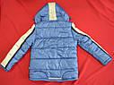 Куртка зимова Canadian блакитна (QuadriFoglio, Польща), фото 10