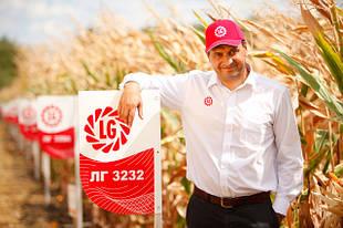 Семена кукурузы Лимагрейн
